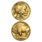 SUA Buffalo 1 oz Aur 2013