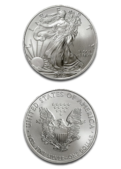 USA American Eagle 1 Dollar 1oz Silver 2010